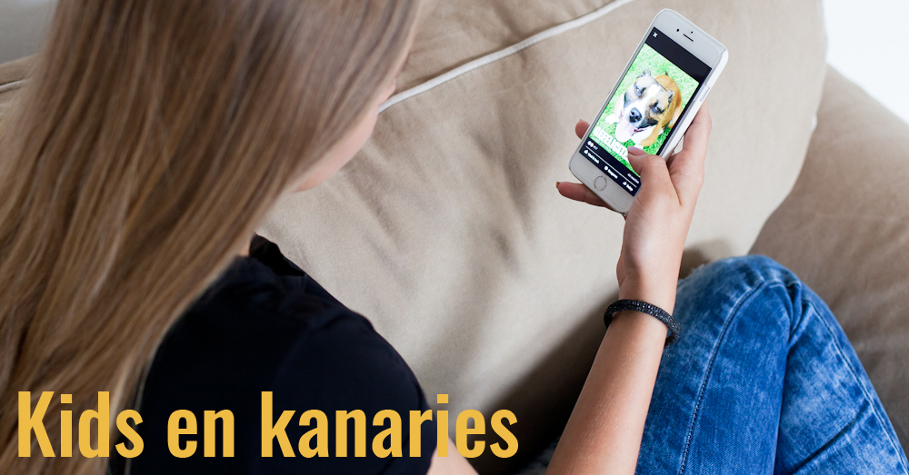 TT FB Kids en kanaries